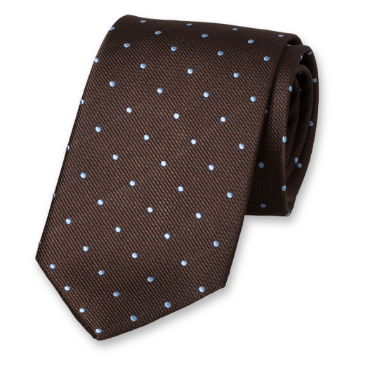 Brown Tie with Light Blue Dots - Silk (1)