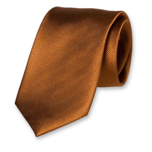 Light Brown Tie - Silk (1)